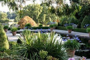 Photograph of Borde Hill Gardens, image links to Borde Hill Garden website