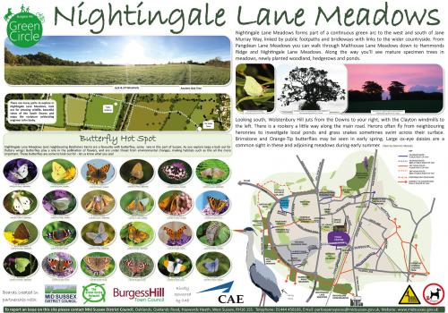 Image of the Nightingale Lane Meadows information board.