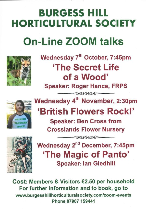 Burgess Hill Horticultural Society – The Secret Life of a Wood